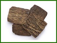 杜仲の樹皮